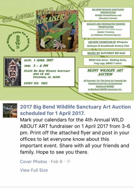 Big Bend Wildlife Sanctuary to Host Wild About Art Auction Set for April 1st