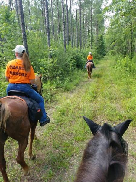 Dale County Sheriff Mounted Posse
