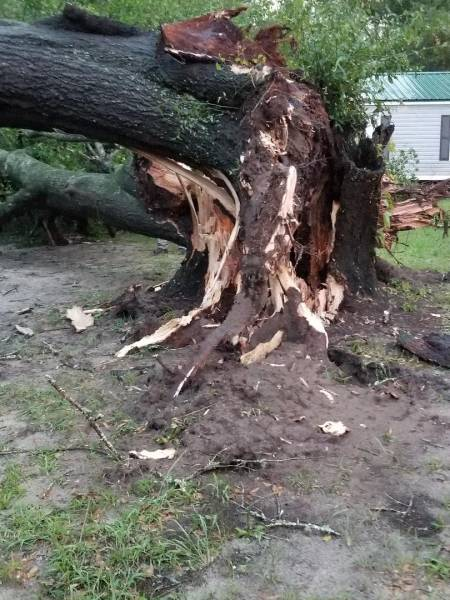 9:02 PM... Storm Damage in the Gordon Area