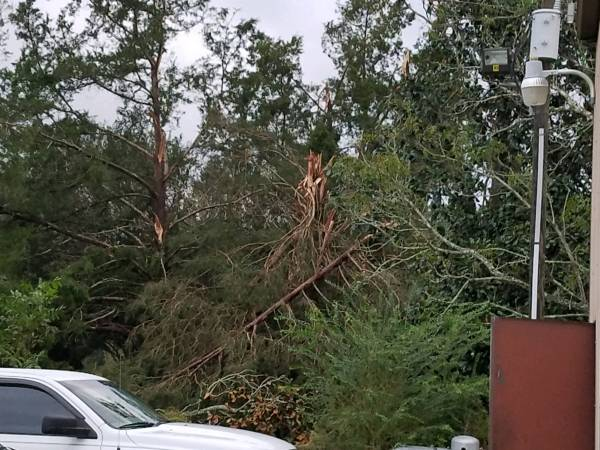 Volunteers and First Responders in Houston County Work to clear Roads