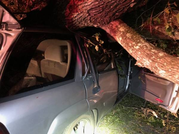 6:58 PM.. Vehicle veres Tree on Bill Yance Road
