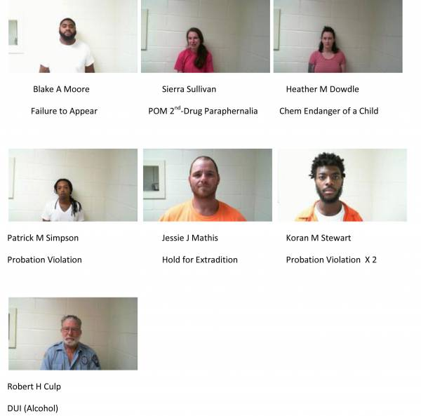 Dale County Sheriff's Office Mugshots of the Day for 11-7-2018