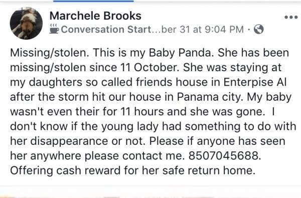 Help Find Panda