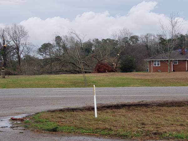 UPDATED at 10:06 AM... Storm Damage from Henry County