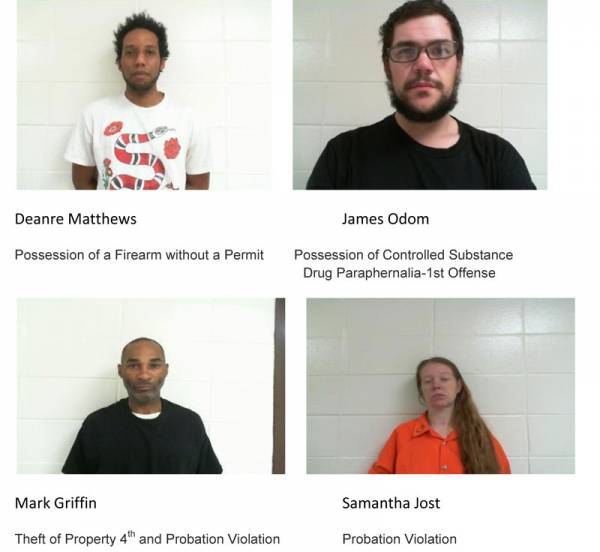 Dale County Sheriff's Office Mugshots for 2/6/2019