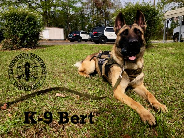DPD K9 Dog of the Day