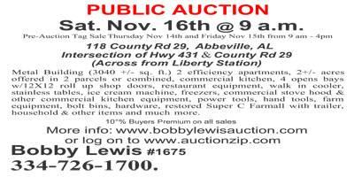 Public Auction Set for November 16th