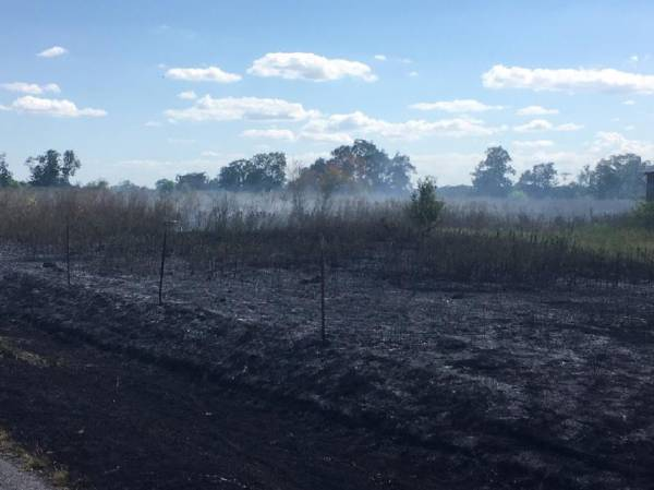 Large Grass Fire on Rocky Creek Road