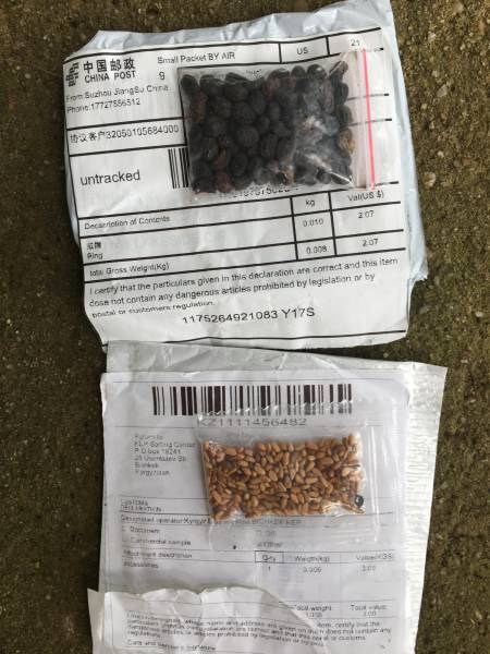 New On-Line System Available for Consumers to Report Unsolicited Seed Packages from China