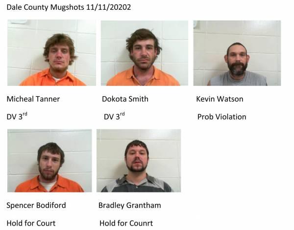 Dale County Mugshots 11/11/20202