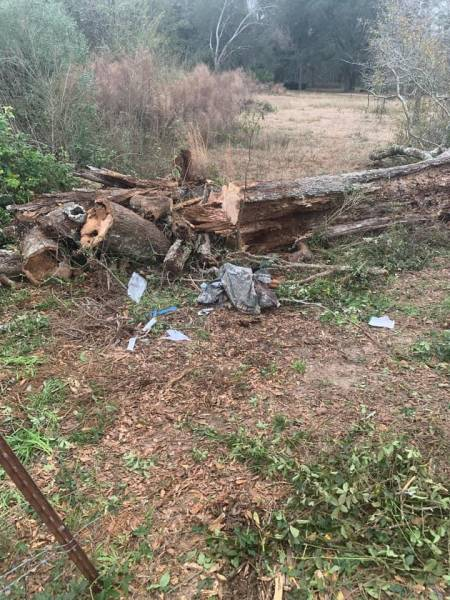Bobby Kohen - A Tree Fell And Trapped On January 9 - UPDATES On His Progress
