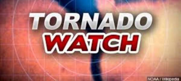 12:06 PM   TORNADO WATCH ISSUED