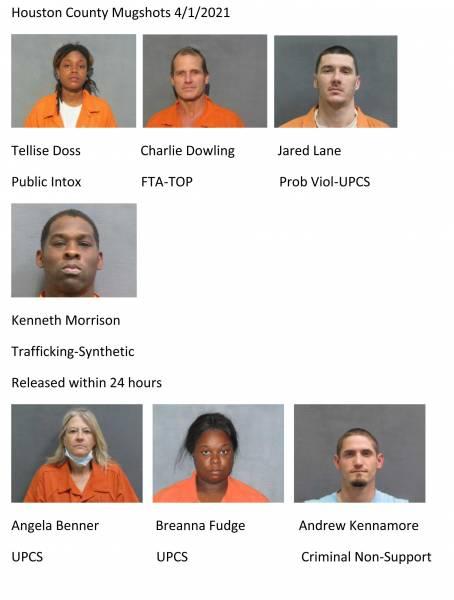 Houston County / Dothan City Mugshots 4/1/2020