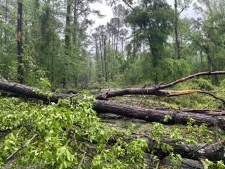Multiple 1st Responders responding to Dam Road in Columbia