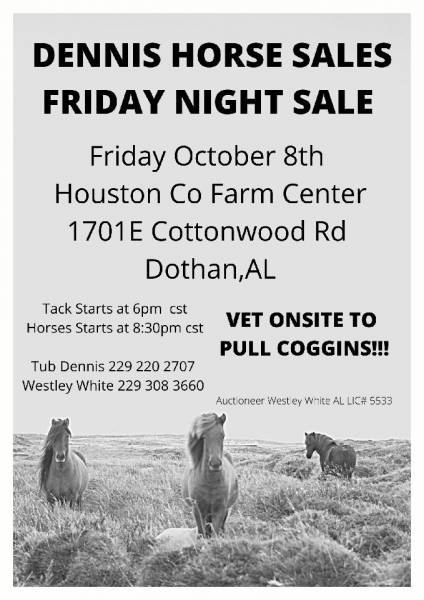 Dennis Horse Sale this Friday Night at the Farm Center